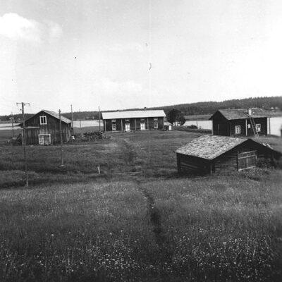 Maj 2020. Torsten Englunds gård från söder. Från vänster ladugård, manbyggnad, bagarstuga. Vargträsk. Foto: Evert Larsson, folklivsforskare, konstnär och konservator som levde mellan åren 1898 - 1964.