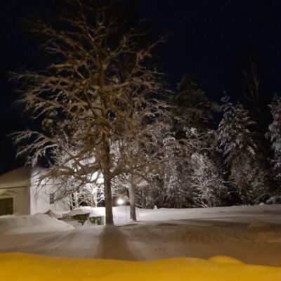 2021-02-02 En kvällsbild över kyrkogården.  Foto: Lena Lagedal